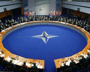 NATO deputatları toplanır