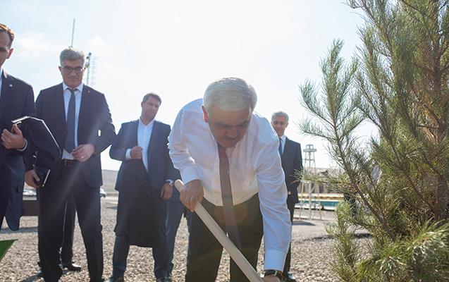Rövnəq Abdullayev ağac əkdi