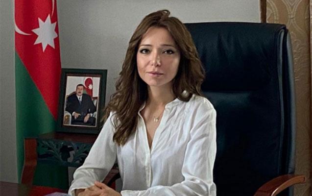 """""""Yazılan məlumatların hamısı şər və böhtan xarakterlidir"""""""
